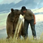 "Tune in Tonight: Official Launch of a New Network, ""Nat Geo Wild"""
