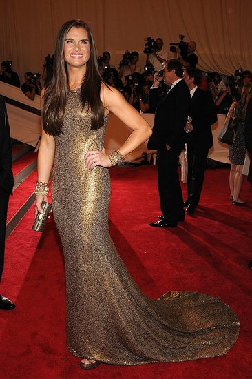 Brooke Shields at the 2010 Costume Institute Gala