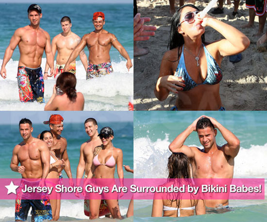 Pictures of Jersey Shore Cast Shirtless in Bikinis in Miami