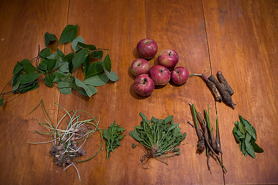 Have You Ever Foraged For Food?