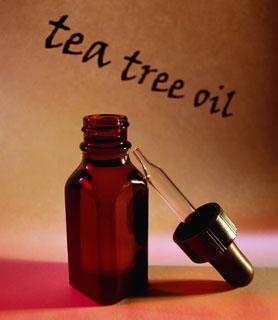 Tea Tree Oil Quiz