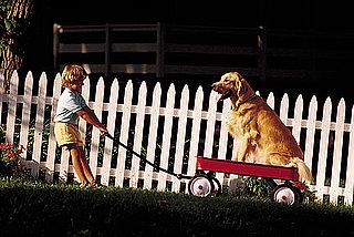 Neighbors Dog Names
