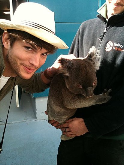 Ashton Kutcher's TwitPics from Sydney Visit to Promote Killers