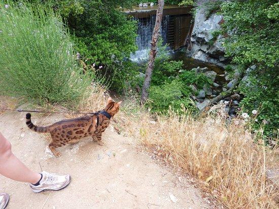 LA hiking