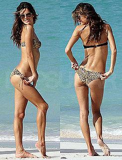 Pictures of Alessandra Bikini