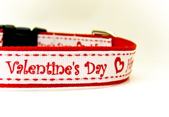 Valentine's Day Greeting Collar