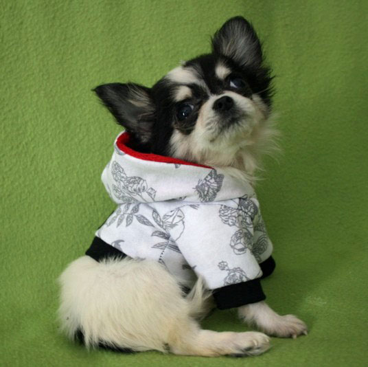 Roses and Hearts Tattoo Print Dog Hoodie