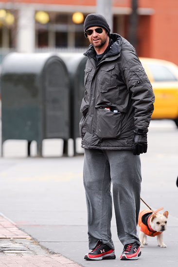 Cute Alert! Hugh Jackman's Puppy Still Tiny, Still Cute