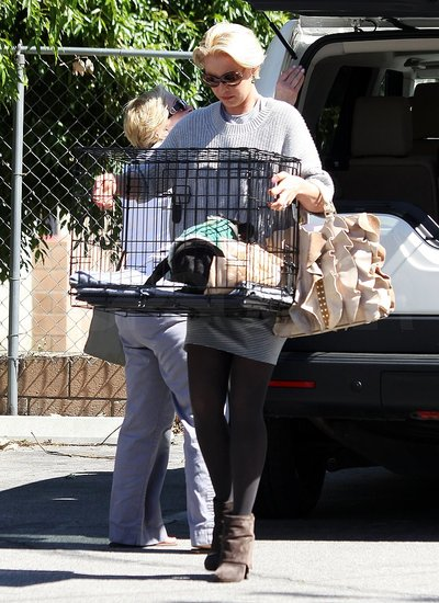 Katherine Heigl Celebrates a New Puppy and Super-Short Haircut