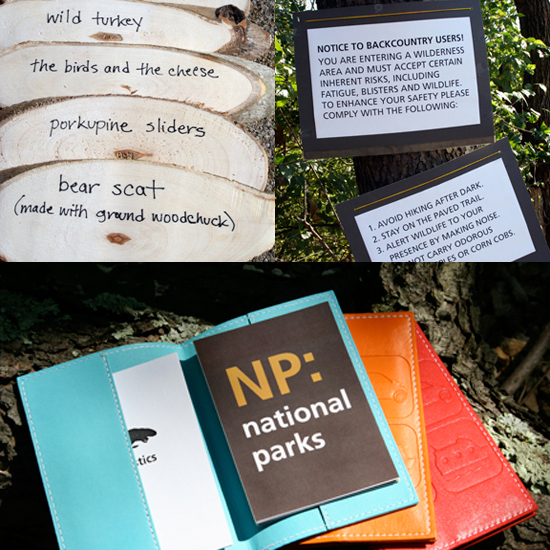 Adventure Hits Close to Home With a National Park Baby Shower
