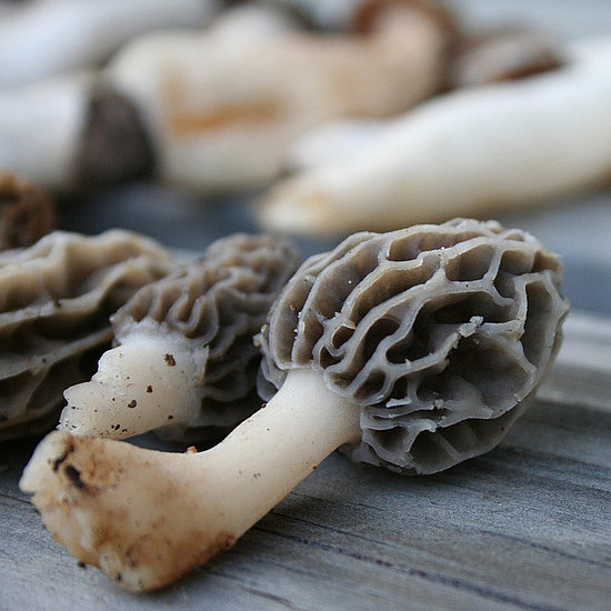 Cooking With Morels