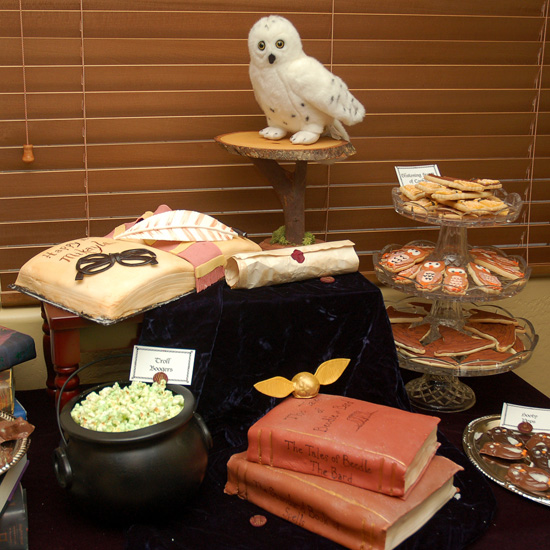 Harry Potter Birthday Party Pictures