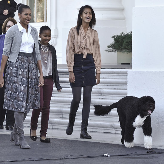 The real Bo, supervising the arrival of the White House Christmas tree with the first lady, Sasha, and Malia.