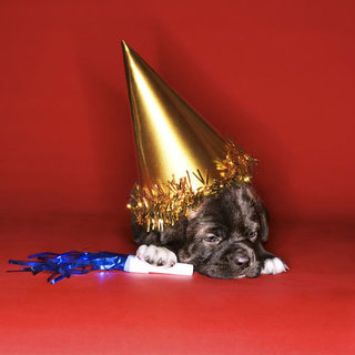 Pet-Related New Year's Resolutions
