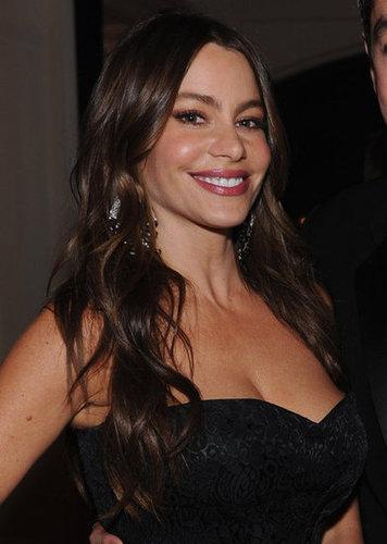 Sofia Vergara smiled for the camera at the White House Correspondant's Dinner.