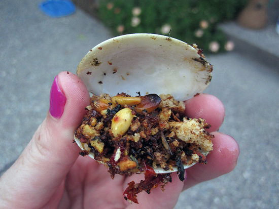 Grilled Clams With Basil Breadcrumbs