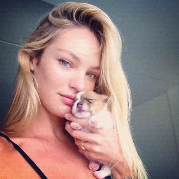 Candice Swanepoel posed with one of her newborn pups. Too. Cute!  Source: Instagram user angelcandices