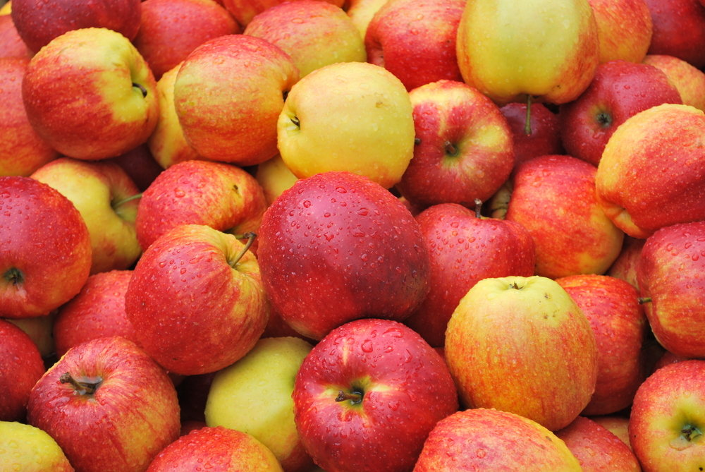 The Fall Food: Apples