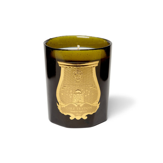 French candle maker Cire Trudon has been pouring wax since 1643. The well-blended scents — think moss-covered walls or herbs with hay — are some of the best you'll find anywhere.
