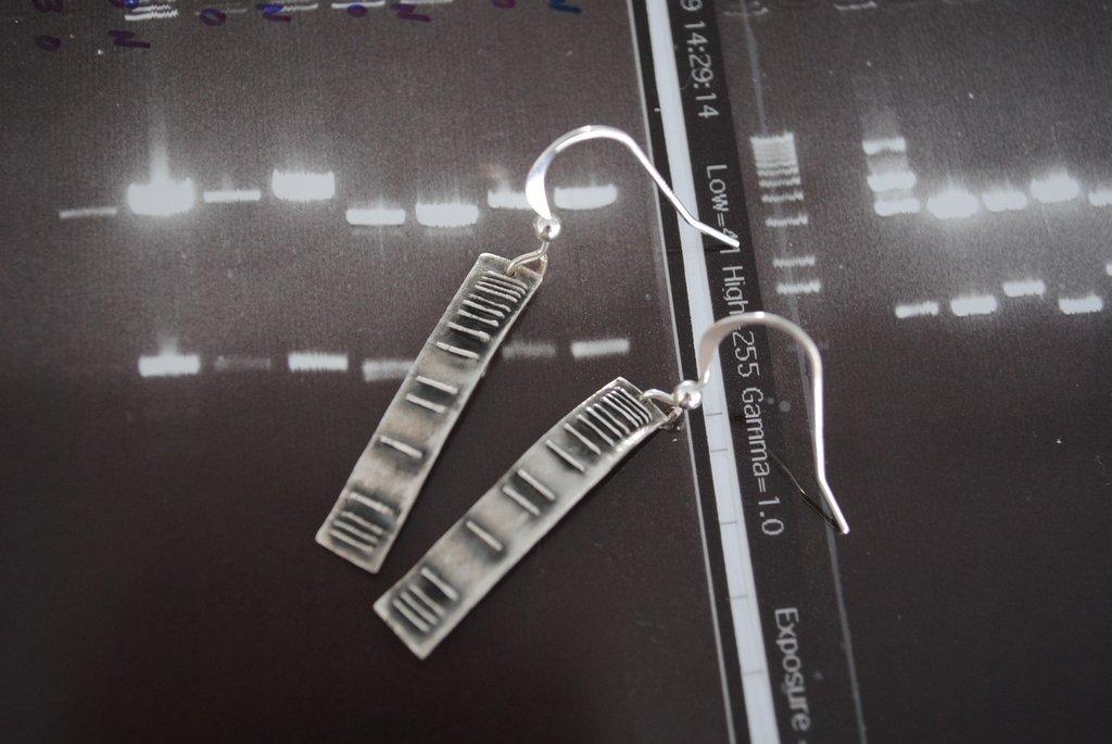 DNA Ladder Earrings