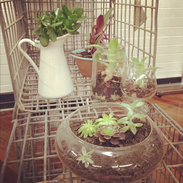 Ca-ute! We loved the little garden setup that we found in The Rumour Mill's lovely studios. Desk envy, anyone?