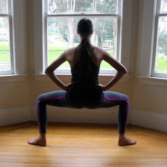 Barre-Style Plie Squat Exercise