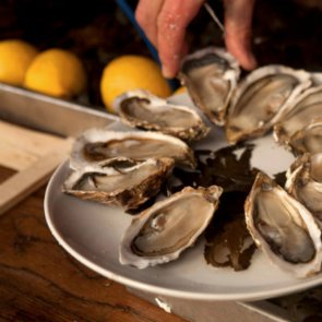 Oyster Poisoning Proves Potentially More Likely as Oceans Warm