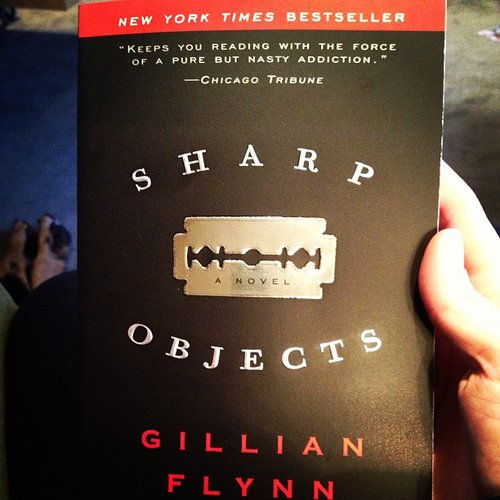 "Nikkisoda wrote: ""Finished Gone Girl now I'm starting another Gillian Flynn book, Sharp Objects. Any other good book suggestions?"""