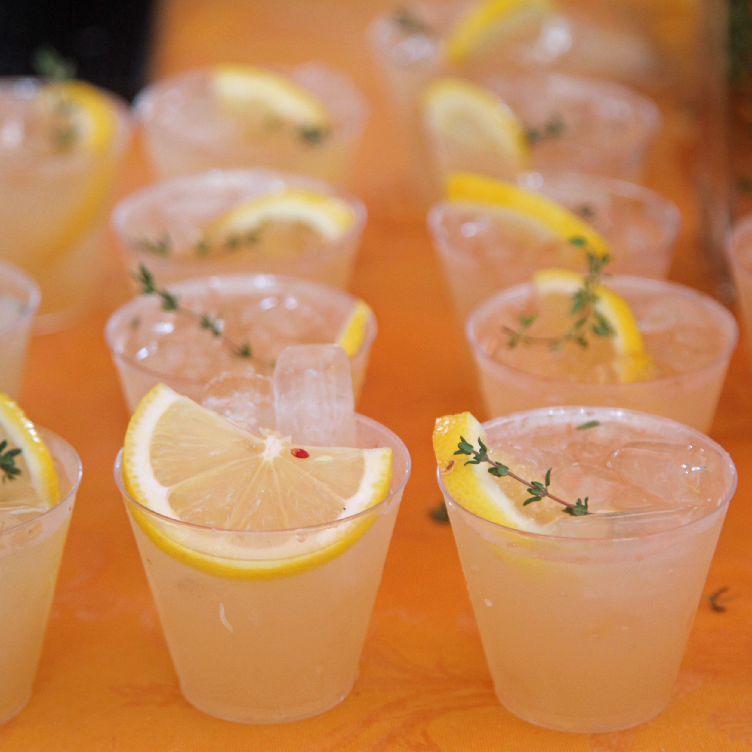 Ginger, Lemon, and Thyme Gin Cocktails | Snapshots From the South ...
