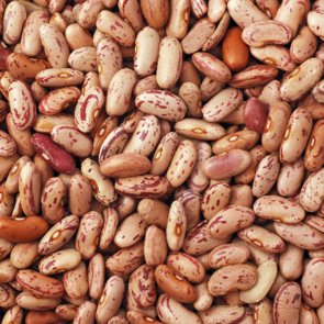When to Use Dried Beans vs When to Use Canned