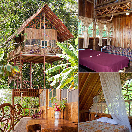 for a tropical escape try costa rica 39 s rainforest tree On costa rica tree house rental