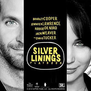 Own Silver Linings Playbook Today!