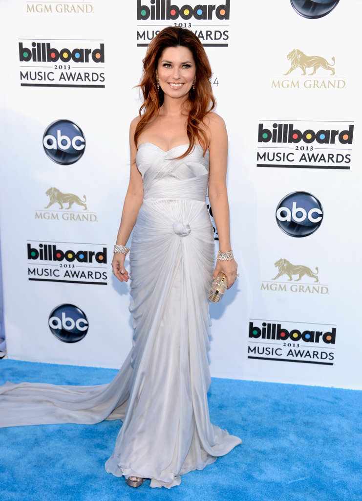 Shania Twain's silver strapless gown came with a cool knot detail that gave it a unique spin.