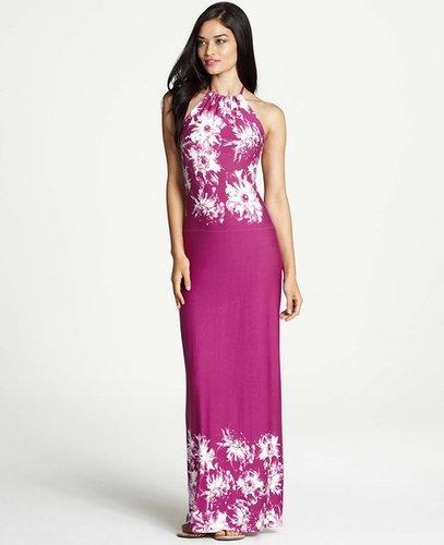 Tall Floral Persuasion Print Halter Maxi Dress