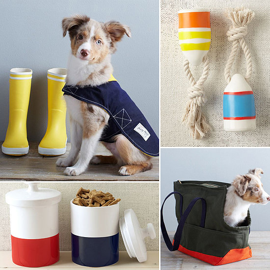 Oh Glorious Day! We Just Discovered West Elm's Adorable Pet Line