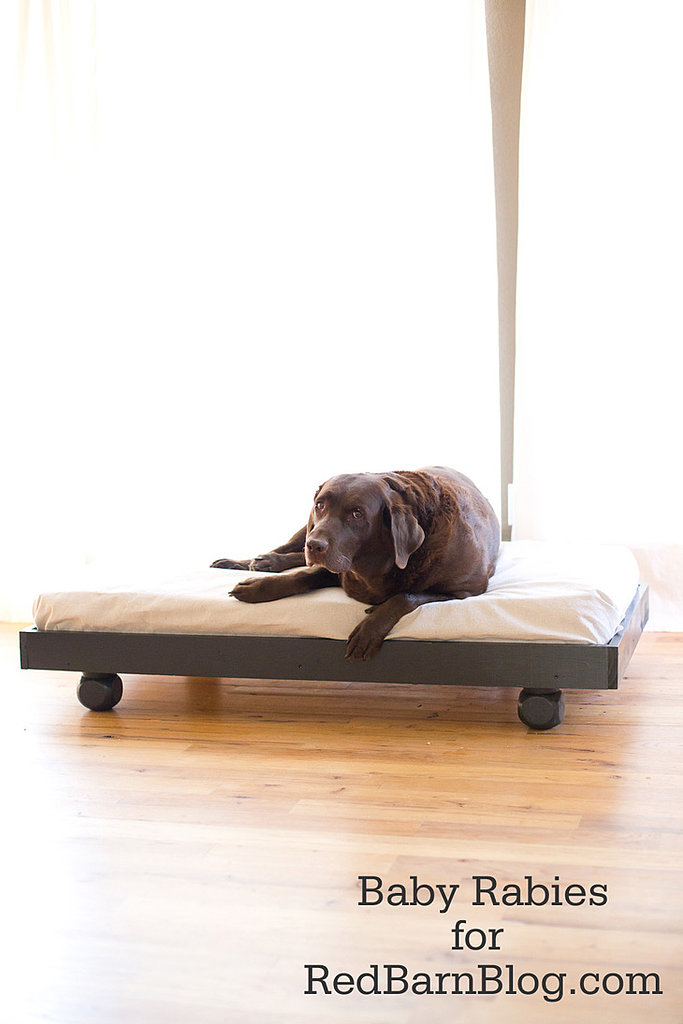 Upcycle Mattress Dog Bed