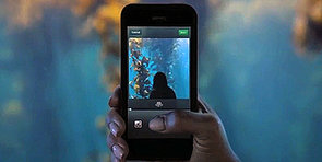 Vine Vs. Instagram Video: The Major Differences Between the Two