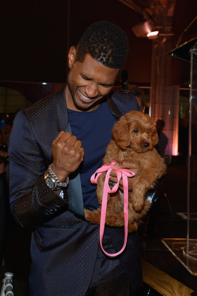 Usher looked happy to walk away from the Pencils of Promise Gala with a new best friend after winning a Goldendoodle puppy with a $12,000 bid in October 2012.
