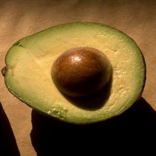 Avocado Recipes For Kids