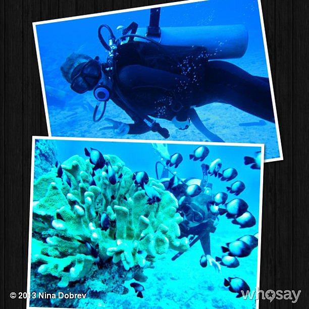 Nina Dobrev went deep-sea scuba diving.  Source: Nina Dobrev on WhoSay