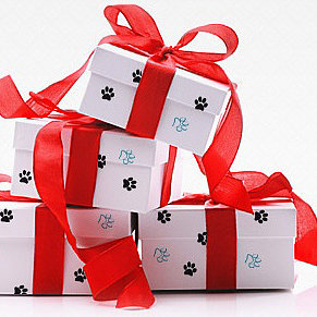 Monthly Boxes For Pets