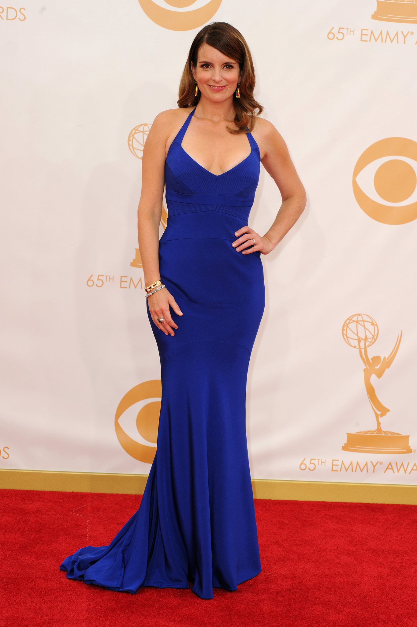Tina Fey stepped out for the 2013 Emmys.