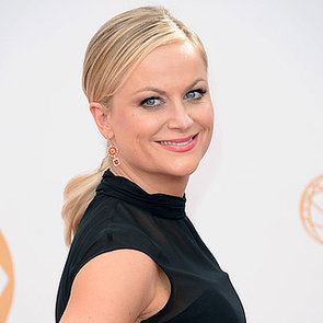 Picture of Amy Poehler at the 2013 Emmy Awards