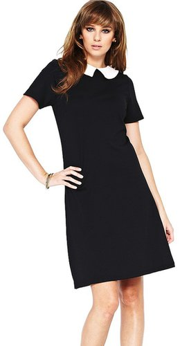 South Collared Ponte Workwear Dress