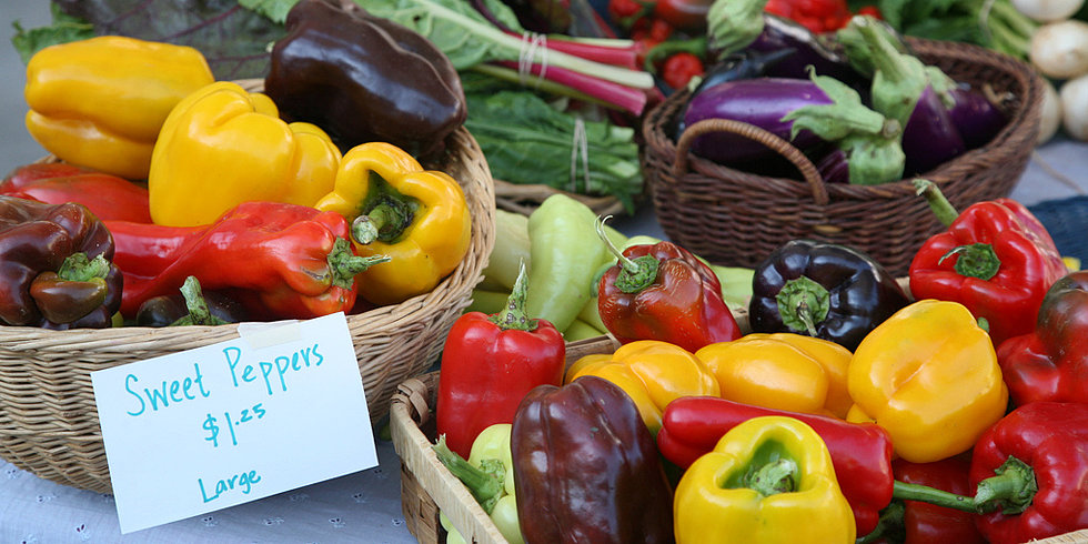Go Green With Our Fall Produce Storage Guide!