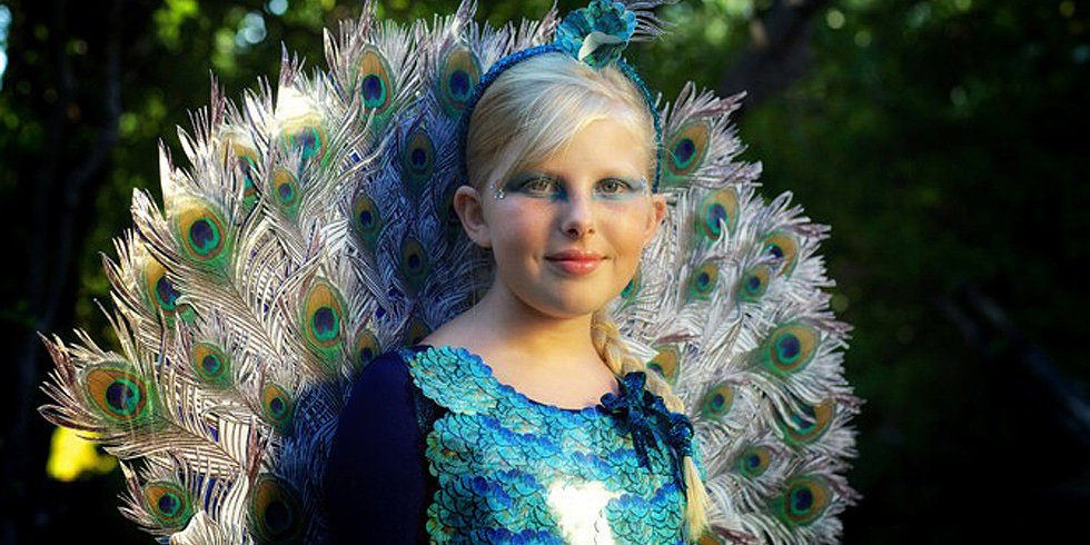 Picture Perfect: You Won't Believe What This Peacock Costume Is Made From!