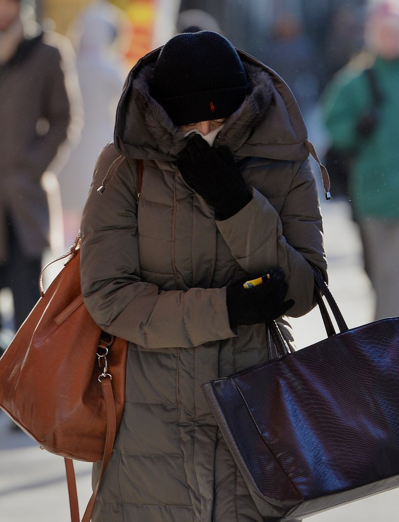 A Very Bundled Up Woman Made Her Way Through Manhattan