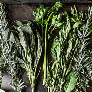 Ways to Avoid a Swampy Herb Situation