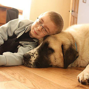 Boy With Schwartz-Jampel Syndrome Gets Help From Dog Haatchi