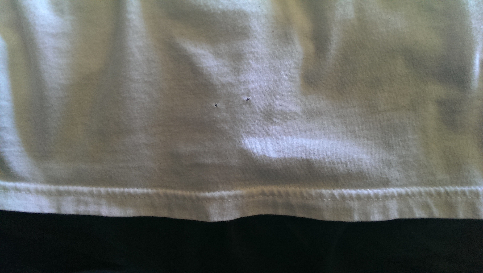 Tiny Holes in a Perfectly Good Shirt